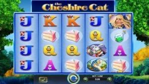 catchire cat slot