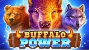 Buffalo-Power-Hold-and-Win